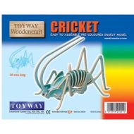Cricket 3D Pre Coloured Insect Model