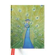 Blank Sketch Book: Peacock