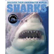 Sharks Encyclopedia: Discover Their Underwater World