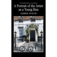 A PORTRAIT OF THE ARTIST ASA A YOUNG MAN