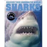 SHARKS DISCOVER