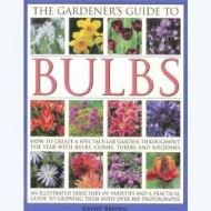 THE GARDENER'S GUIDE TO BULBS (hobbies)