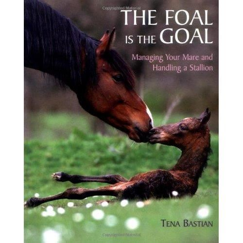 FOAL IS THE GOAL