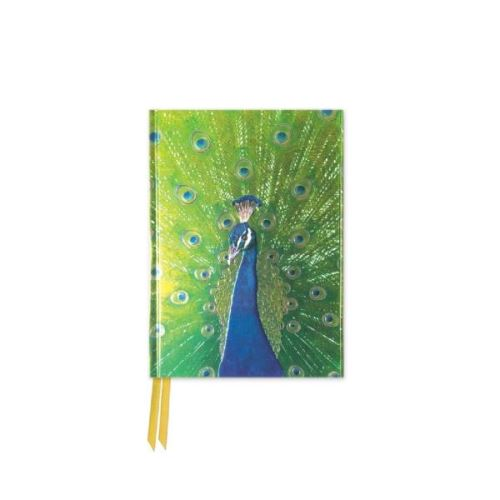 Foiled Pocket Journal: Peacock In Blue And Green (Flame Tree Notebooks)