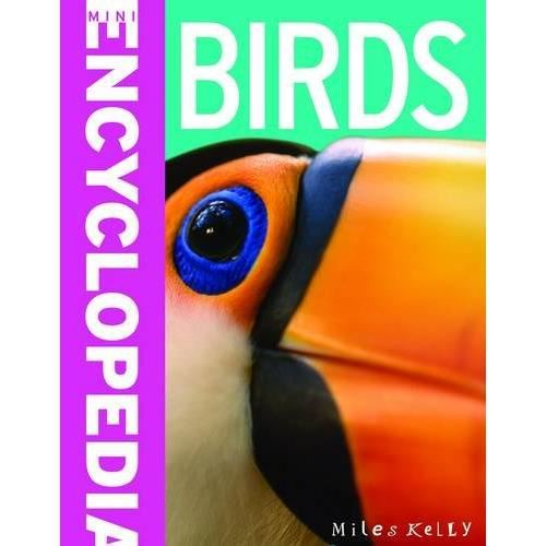 Birds (Mini Encyclopedia) by Belinda Gallagher