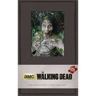 The Walking Dead Hardcover Ruled Journal - Walkers (Insights Journals) Hardcover – May 5, 2015