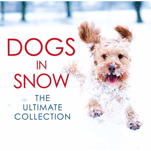 Dogs in Snow: The Ultimate Collection