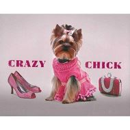 CRAZY CHICK (DOG)