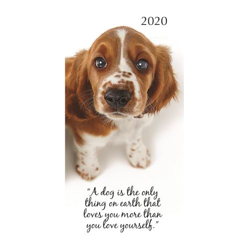 Adorable Dogs 2020 Pocket Diary