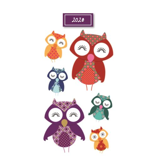 Owls 2020 Pocket Diary by Gifted Stationery
